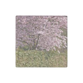 April Subject Stone Magnet