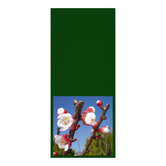 April's Blossom Personalized Announcement