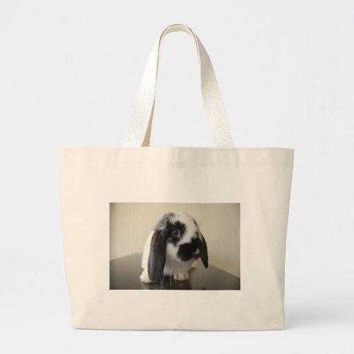 Apron for fair canvas bags