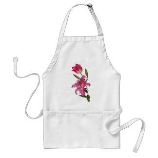 apron of ROSE kitchen