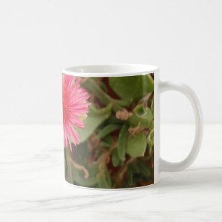 Aptenia Cordifolia Coffee Mug
