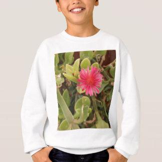 Aptenia Cordifolia Sweatshirt