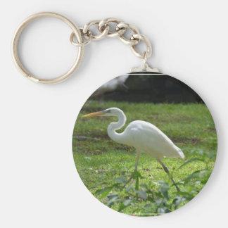 Apuntalar el Egret