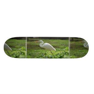 Apuntalar el Egret Monopatín
