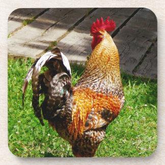 Apuntalar el gallo posavasos