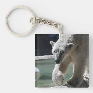 Apuntalar el oso polar llaveros
