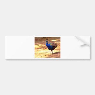 Apuntalar el pavo real .jpg pegatina para coche