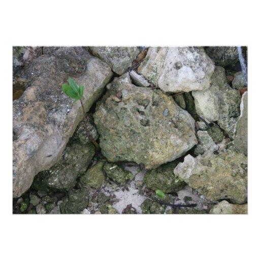 Apuntale las rocas, dentadas, con el pequeño lanza comunicado