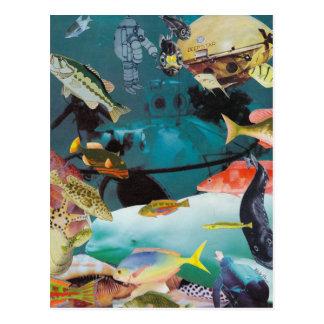 Aqua Adventures Postcard