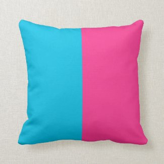 Aqua and Pink Throw Pillow