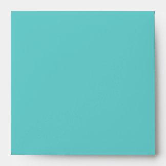 Aqua Birthday Party Square Envelope - White Inside