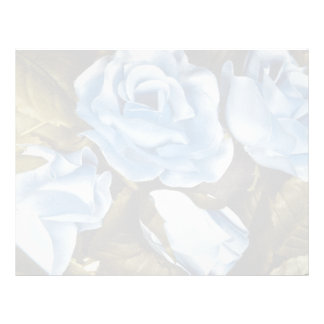 Aqua Blue roses flowers Letterhead Template