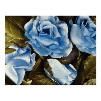 Aqua Blue roses flowers Postcard