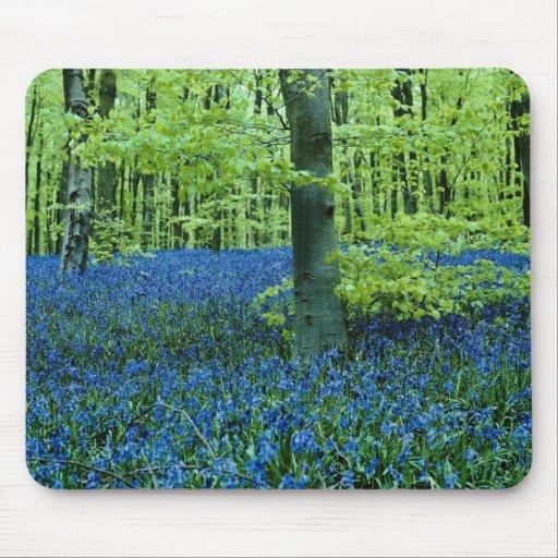 Aqua Bluebell Woods flowers Mousepads