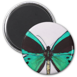 Aqua Butterfly 2 Inch Round Magnet