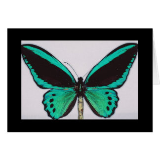 Aqua Butterfly Greeting Card