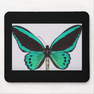Aqua Butterfly Mouse Pad