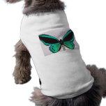 Aqua Butterfly Pet Clothes