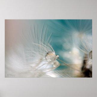 Aqua Dandelion Seed Print