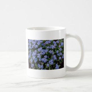Aqua Forget-Me-Not, (Myosotis Alpestris) flowers Mugs