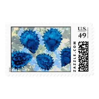 Aqua Forget-me-not seeds (Myosotis palustris) flow Stamps