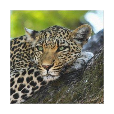 Art Themed Aqua_Leopard_20180101_by_JAMColors Canvas Print