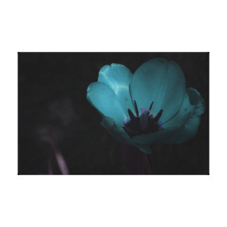 Aqua Marine Flower Canvas Print