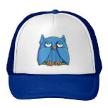 Aqua Owl Hat