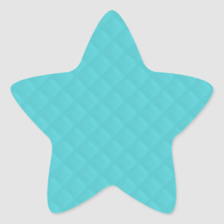Aqua Quilted Leather Star Sticker