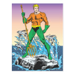Aquaman Stands With Spear Postcard