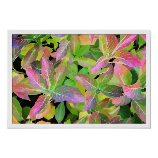 Aquarelle autumn colors Hydrangea Poster