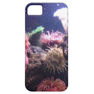 Aquarium 1 Iphone 5 Case