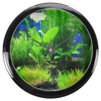 Aquarium 4 (Plants) Aquarium Clocks
