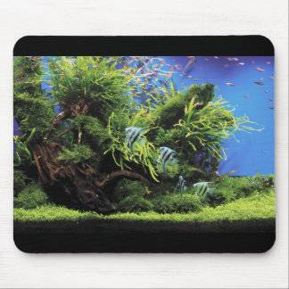 Aquarium and No.02 where the angel fish of the fre Mouse Pad