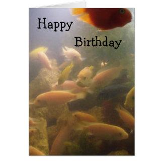 Aquarium Birthday Card