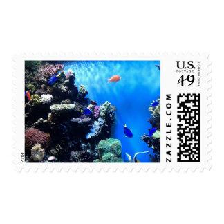 Aquarium - Brightly Colored Fish! Postage