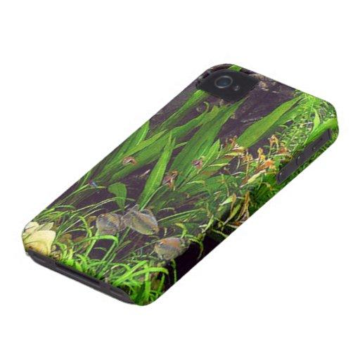 Aquarium Case-Mate iPhone 4 Cases