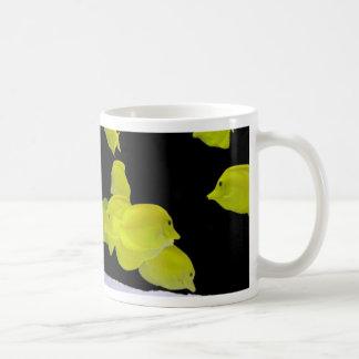 Aquarium cup