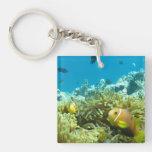 Aquarium Fish Acrylic Keychain