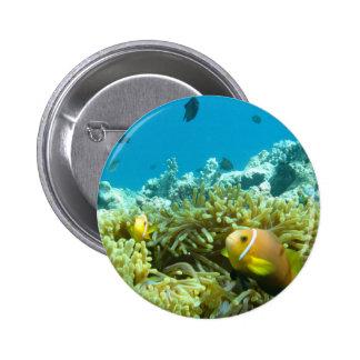 Aquarium Fish Pin