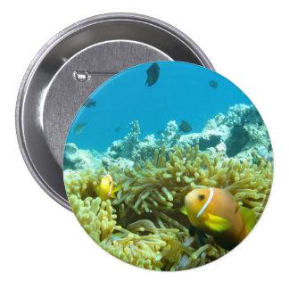 Aquarium Fish Pinback Button