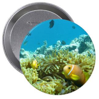 Aquarium Fish Button