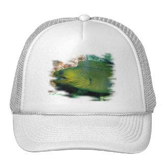 Aquarium Fish Collection by FishTs.com Mesh Hats