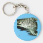 Aquarium Fish Collection by FishTs.com Key Chain