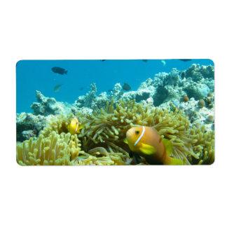 Aquarium Fish Custom Shipping Label