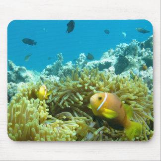 Aquarium Fish Mousepads