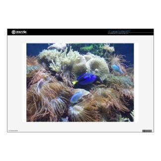 Aquarium Fish Photo Decal For Laptop