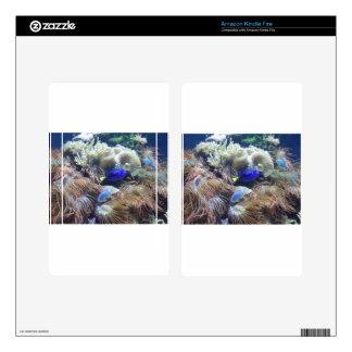 Aquarium Fish Photo Kindle Fire Decals