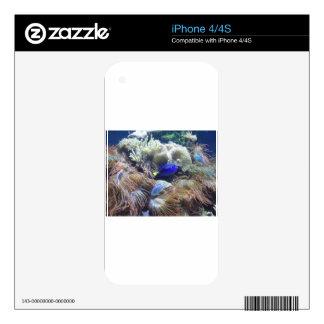 Aquarium Fish Photo Skins For iPhone 4S