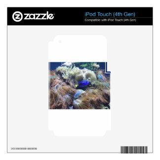 Aquarium Fish Photo Skins For iPod Touch 4G